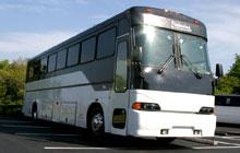 40-passenger-party-bus-near-fort-lauderdale