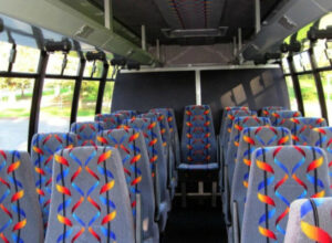 20 Person Mini Bus Rental Fort Lauderdale